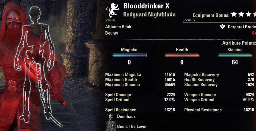 Stamina Nightblade Bleed Build PvE