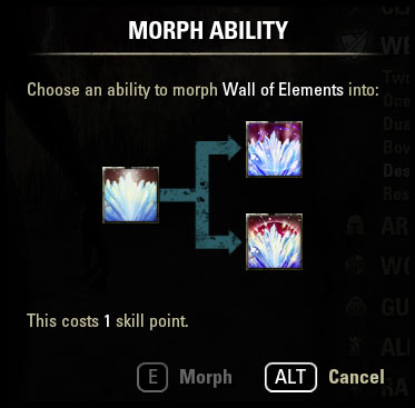 Morphing Guide Purchase Morph