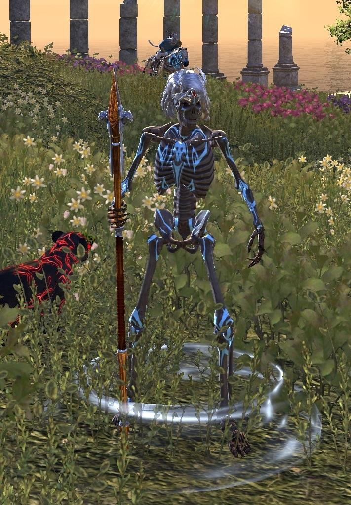 Pirate Skeleton Visual Effect Fashion