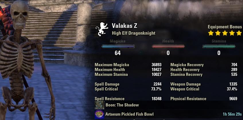 Magicka Dragonknight pve dps build META unbuffed stats ESO