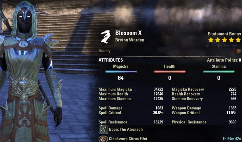 Magicka Warden Healer Build unbuffed stats ESO