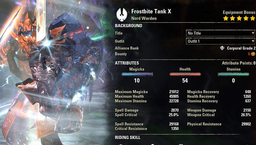 Warden Tank Build PvE buffed stats