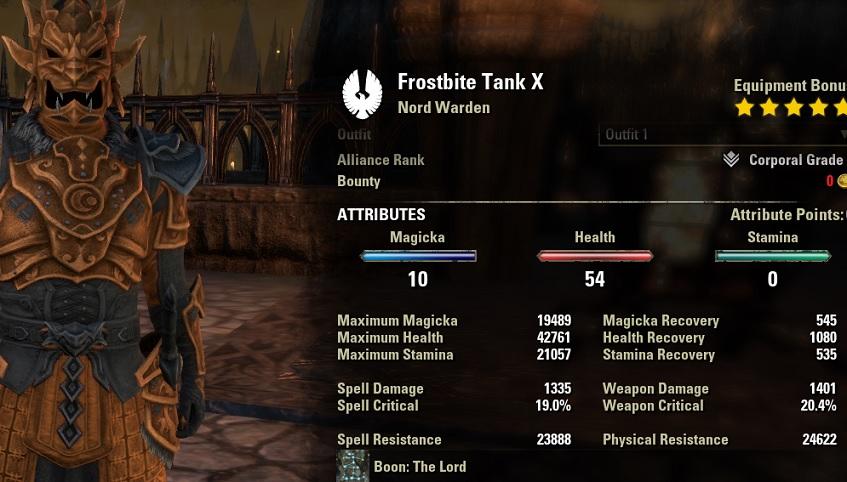 Warden Tank Build PvE unbuffed stats
