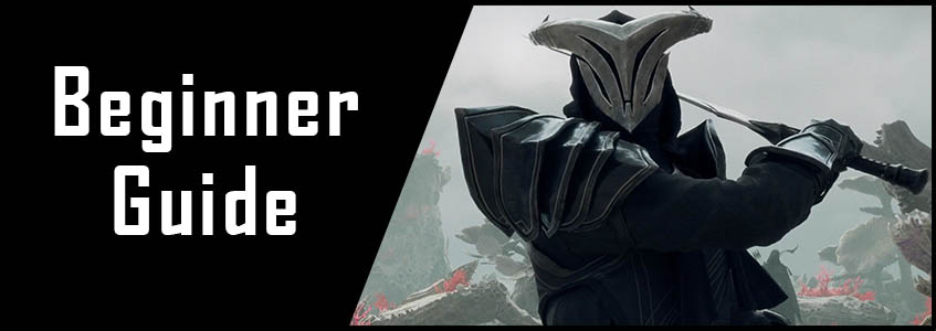 dps beginner guide eso banner picture