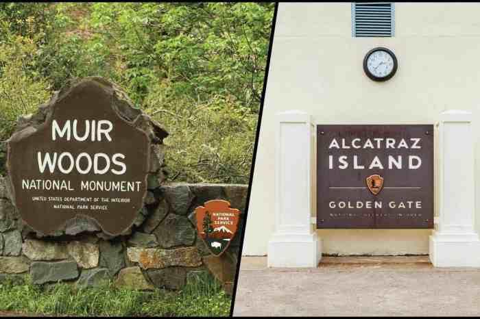 Alcatraz and Muir Woods Tour