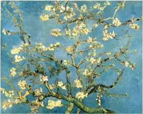 Vincent Van Gogh, Almendro en flor, 1890