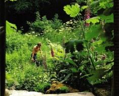 Gilles Clément en su jardín de la Vallee
