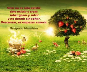 imagenes-de-reflexion-bonitas-vivir-400x334