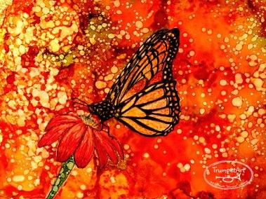 PapillonDansleJardin