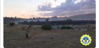 Fuego y caída de ramas en Alcorcón
