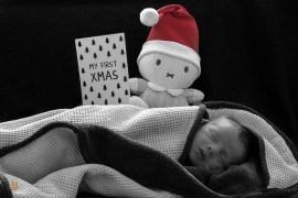 baby-3515
