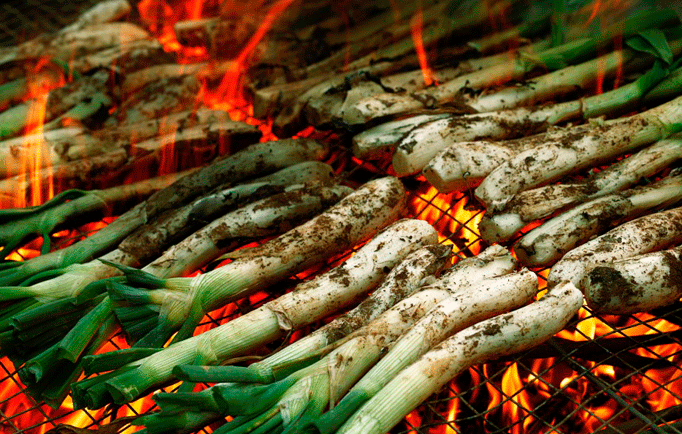 grilling Calçots