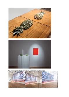 CONTEMPORARY ART DAILY_Diango Hernandez 2
