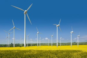 Wind Farm Donate Today ALCSE