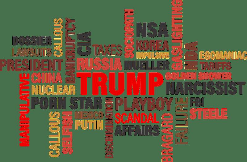 Gráfico vectorial Trump. Autor: Mary Pahlke. Fuente: Pixabay.