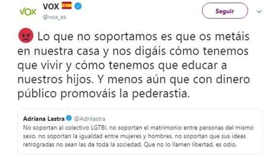 Tweet de Vox uniendo pederastia con el colectivo LGTB, otra de sus posibles causas legales. Fuente: Twitter (borrado).