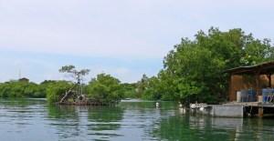 Nombran comisionado especial para Vieques y Culebra
