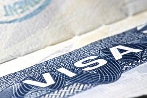 Demandan a Departamento de Seguridad Nacional por permitir trabajo a extranjeros