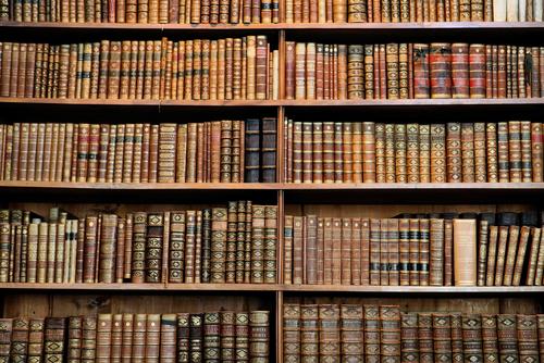 Bibliotecarios sientes que son mal remunerados