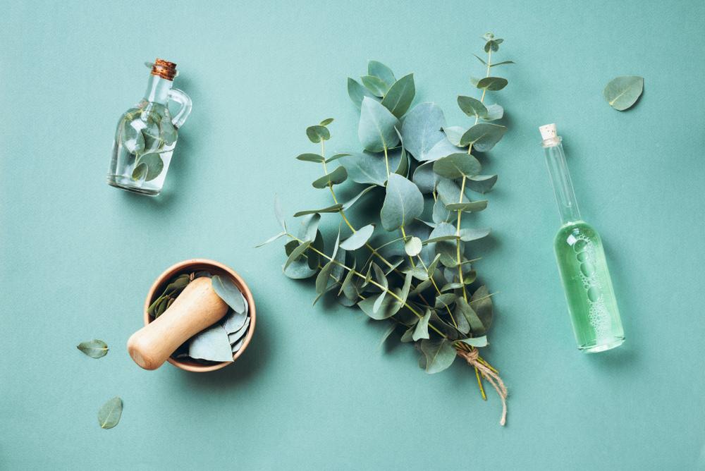 naturopatía; medicina