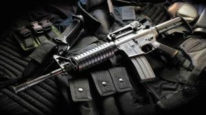 armas-policía-federal