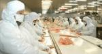 salmones