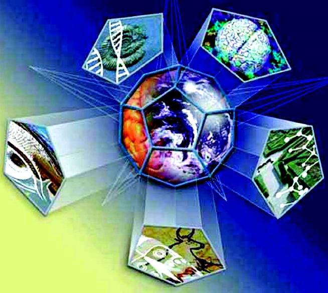 Bases de dados, repositórios de informação, bibliotecas digitais e virtuais
