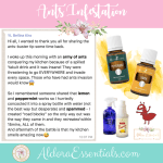 Ants, Pests, Insects, YL, Young Living, Essential Oils, Peppermint, Lemon, Thieves, Thieves Household Cleaner