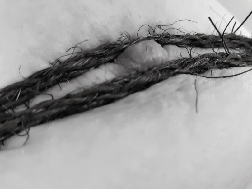 close up of nipple and coarse coir rope