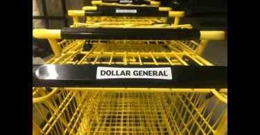 Alea's Deals Tips for Saving BIG at Dollar General!