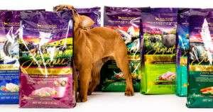 Alea's Deals Free 4Lb Bag Of Zignature Dog Food (Coupon)