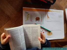 Graphilettre-Ecrire un acrostiche