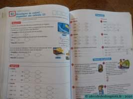 Litchi CE2 - Stratégies de calcul