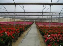 Комплексное решение тепличного хозяйства