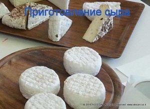 сыр, французский сыр, семинар, курс, мастер-класс
