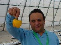 Курс по передовому выращиванию овощей и клубники