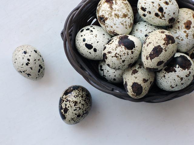 Ouăle de prepeliță și beneficiile lor