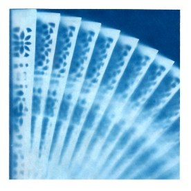 a cyanotype print of a spread fan