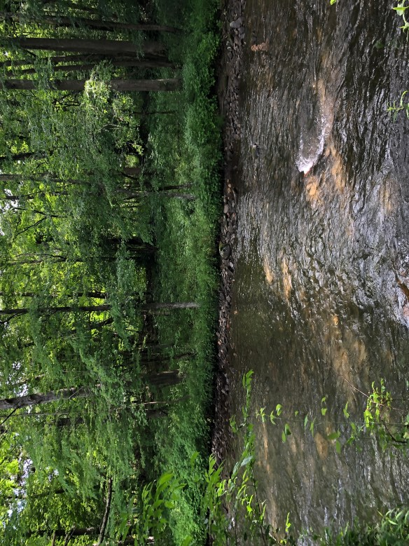 Oconaluftee River, part of our Smoky Mountains visit