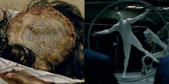 Westworld 1x04 The Dissonance Theory cena1
