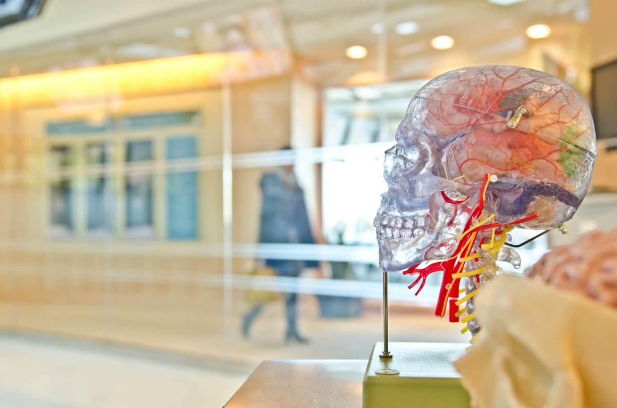 A maior lista de Vieses Cognitivos que você já viu (provavelmente)