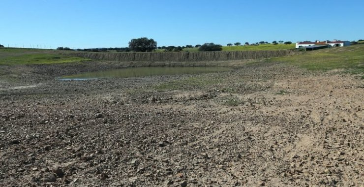 Agricultores justificam pouca utilização de ajudas à seca com burocracia e atrasos