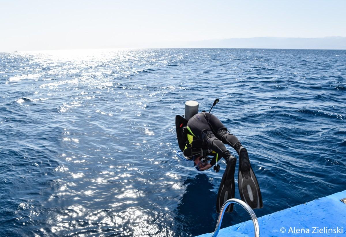dive-challenge-jordan-alena-zielinski-48-von-82