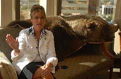 La grizzly-killer enfin photographiée