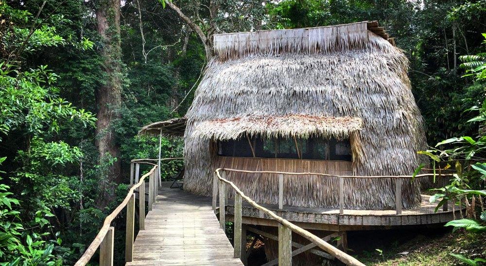 Ngaga Camp