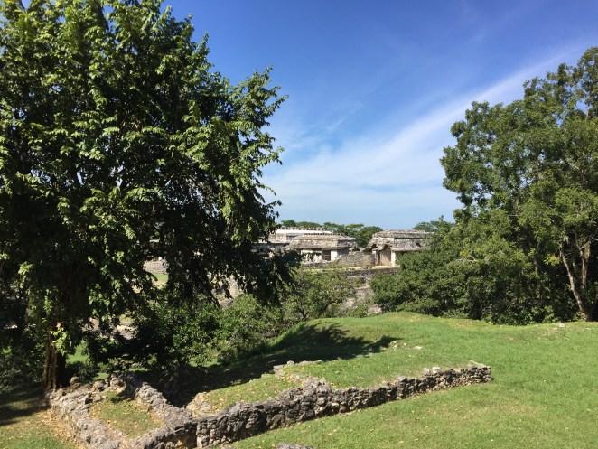 Zona arqueológica Palenque, #Chiapas img 2834