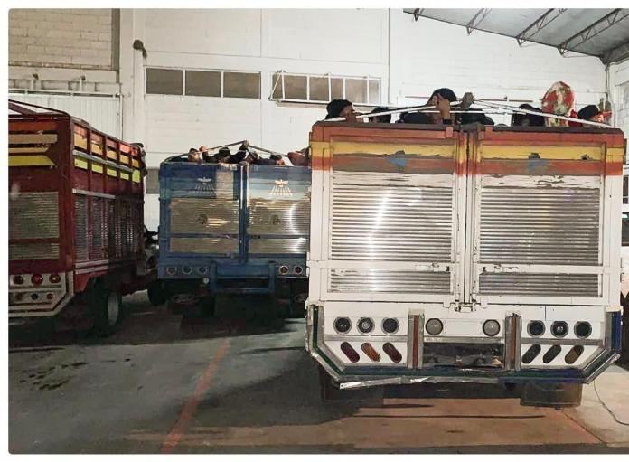 Interceptan en Comitán a polleros que transportaban 281 migrantes centroamericanos