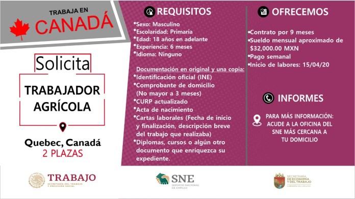 Ofertará Secretaría de Economía y del Trabajo más de mil vacantes WhatsApp Image 2019 10 13 at 2.16.16 PM 1