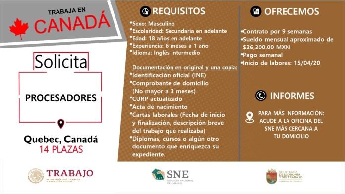 Ofertará Secretaría de Economía y del Trabajo más de mil vacantes WhatsApp Image 2019 10 13 at 2.16.18 PM