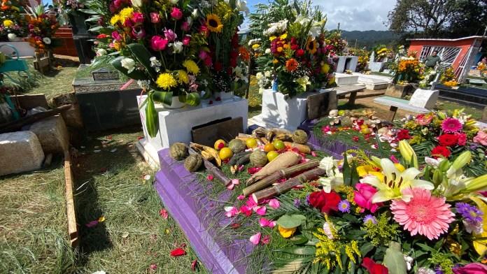 Todas las flores del mundo en el panteón de Zinacantán img 5369
